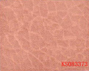 Train leather KS083373